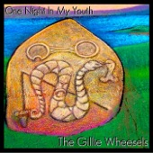 The Gillie Wheesels - One Night in My Youth