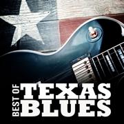 Best of Texas Blues - Various Artists