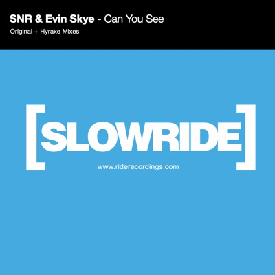 Can You See - Single - SNR & Evin Skye album