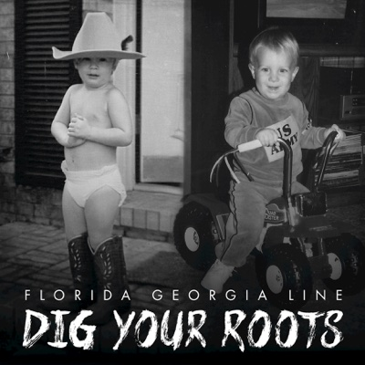 Dig Your Roots - Florida Georgia Line album