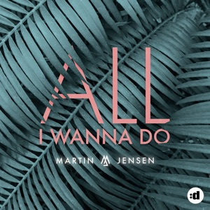Martin Jensen - All I Wanna Do - Line Dance Music