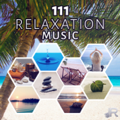 111 Relaxation Music: Sound Therapy For Zen Meditation, Yoga, Spa, Massage & Reiki, New Age Ambience For Deep Sleep, Study & Mindfulness  Relaxing Zen Music Ensemble - Relaxing Zen Music Ensemble