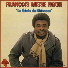 Image result for Francois Misse Ngoh