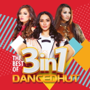 The Best of 3in1 DANCEDHUT - Various Artists - Various Artists