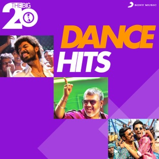 The Big 20 (Dance Hits) – Various Artists