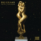 Big Grams - Fell In the Sun