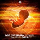 Ace Ventura - Rebirth