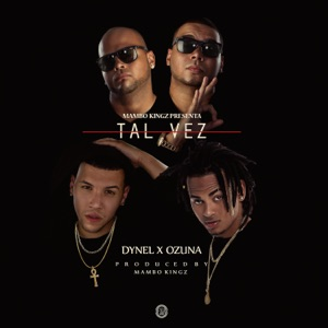 Tal Vez (feat. Mambo Kingz & DJ Luian) - Single Mp3 Download