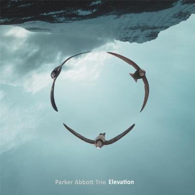 Elevation - Parker Abbott Trio album