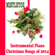Where Are You Christmas (Instrumental Version) - The O'Neill Brothers Group