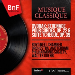 Serenade for Strings in E Major, Op. 22, B. 52: I. Moderato