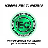 You're Gonna Die Young (IC & Nordh Extended Remix) - Single