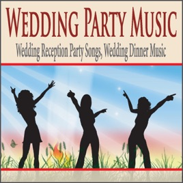 wedding party music wedding reception party songs wedding dinner music
