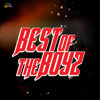 Various Artists - Best of the Boys artwork