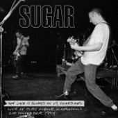 Sugar - After All the Roads Have Led to Nowhere (Live at First Avenue, Minneapolis, 2nd November 1994)