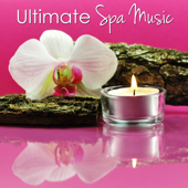 Spa Music Water (with Gentle Waves on the Beach)