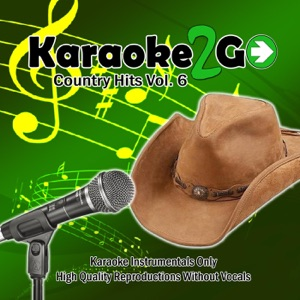 Karaoke2go - A Guy Walks Into a Bar (Karaoke Instrumental Track) [In the Style of Tyler Farr]