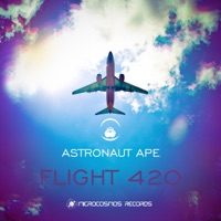 High Above the Clouds - Astronaut Ape
