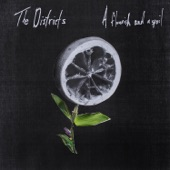 The Districts - Young Blood