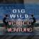 Venice Venture - Big Wild