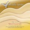 Venti dello spirito (Gold Collection, 1988-2007) [In occasione del 20 anniversario del Servizio Nazionale della Musica e del Canto del Rinnovamento nello Spirito Santo] - Rinnovamento nello Spirito Santo