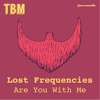 Lost Frequencies - Are You With Me artwork