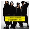 DOBERMAN INC The Best (Victor Years) ジャケット写真