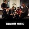 Criminal Minds, Season 4 wiki, synopsis