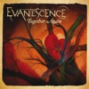 Together Again - Single, Evanescence