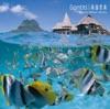 南国音楽  Resort Music Series ジャケット写真