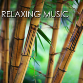 Relaxing Music - Songs and Lullabies to Help You Relax, Sleep and Meditate (With Piano Music and Celtic Harp)