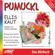 Ellis Kaut - Einiges über Kobolde / Spuk in der Werkstatt (Pumuckl 1)
