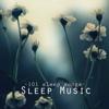 Sleep Music Academy - Deep Sleep Music - 101 Sleep Songs for Sleeping, Sounds of Nature to Relax & Falling Asleep at Night artwork