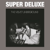 The Velvet Underground - I'm Gonna Move Right In