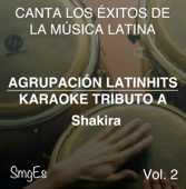 Instrumental Karaoke Series: Shakira, Vol. 2 (Karaoke Version)