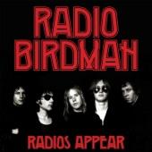 Radio Birdman - Love Kills