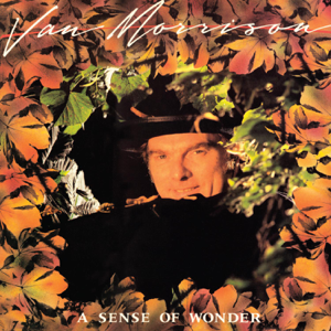 Van Morrison - A Sense of Wonder (Bonus Track Version)