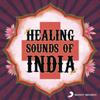Healing Sounds Of India - Various Artists