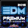 EDM Premium 2015. Include Session Mix - Various Artists