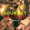 Gourmet Culture, Vol. 1 (High Class Relaxing Tunes)