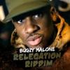 Icon Relegation Riddim - Single