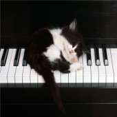 Chandelier (Originally Performed By Sia) [Piano Karaoke By Ear in Lower Key] [feat. Madilyn Bailey] - Single