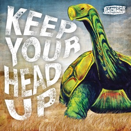 keep your head up song download
