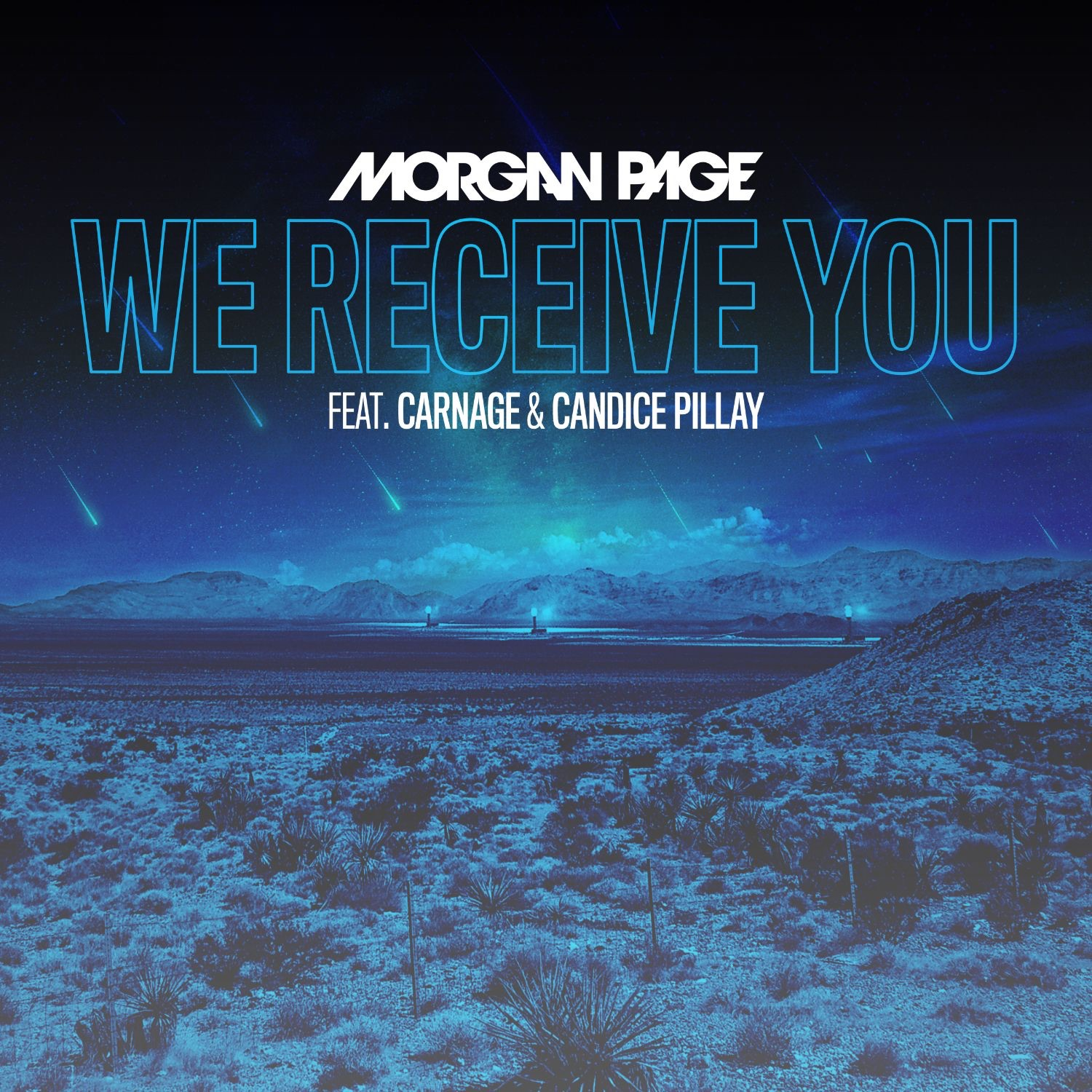 We Receive You (feat. Carnage and Candice Pillay) - Single
