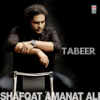 Shafqat Amanat Ali - Tabeer artwork