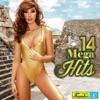 14 Mega Hits, Vol. 2