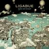 Ligabue - A modo tuo artwork