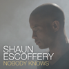 Shaun Escoffery - Nobody Knows (Rolling Stock Remix) Grafik