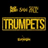 Trumpets (feat. Sean Paul) - Single, Sak Noel & Salvi