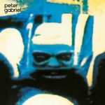 Peter Gabriel - The Family and the Fishing Net